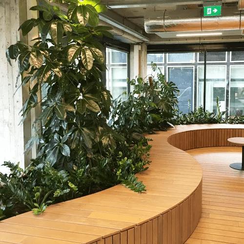 Planten verbeteren de luchtkwaliteit -Artiplant