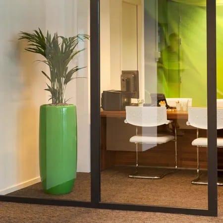 Leuke kantoorplanten in combinatie met plantenbakken op RAL kleur