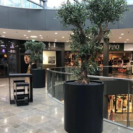 Kunstplanten voor bedrijven en kantoren
