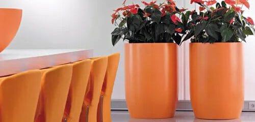 plantenbak op kleur