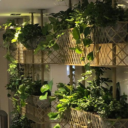 Design plantenmuur - Artiplant