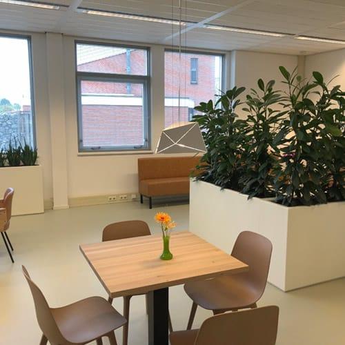 Waarom planten op kantoor? Artiplant