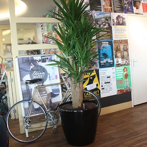 Urban plantenbakken, bloempotten en schalen - Artiplant
