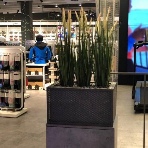 In-store kunstplanten - Den Haag - Artiplant