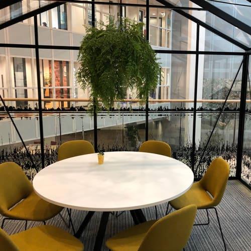 Kunst hangplanten op kantoor - Artiplant