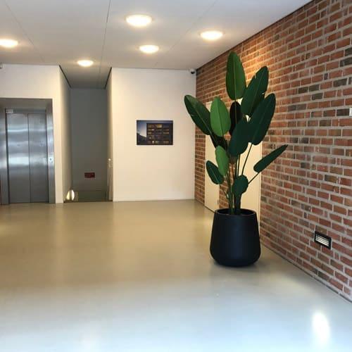 Kunstplanten voor de projectontwikkelaar - Amsterdam - Artiplant