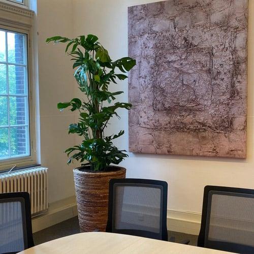 Natuurlijke plantenbakken & bloempotten - Artiplant