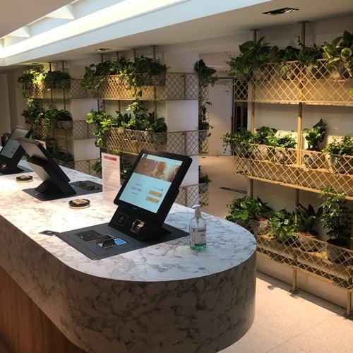 Sfeervolle planten voor hotel - Artiplant