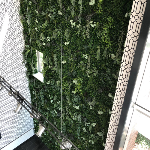 Kunst plantenwanden op maat - Artiplant