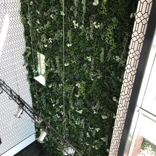 Kunst plantenwanden in alle maten - Artiplant
