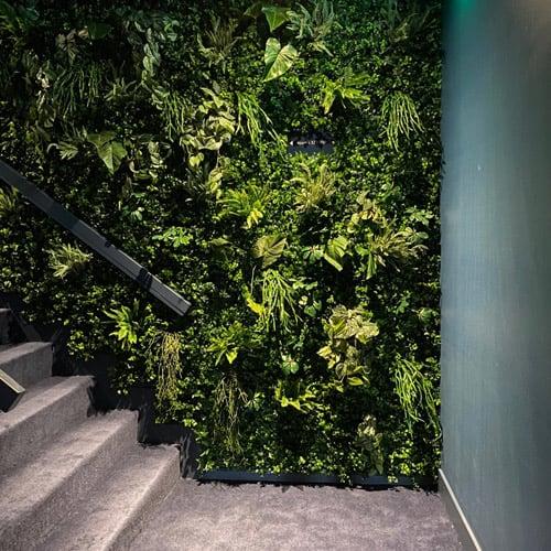 Groene plantenwanden -Artiplant