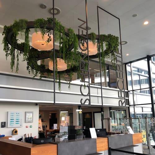 Kantoorplanten - Amsterdam - Artiplant