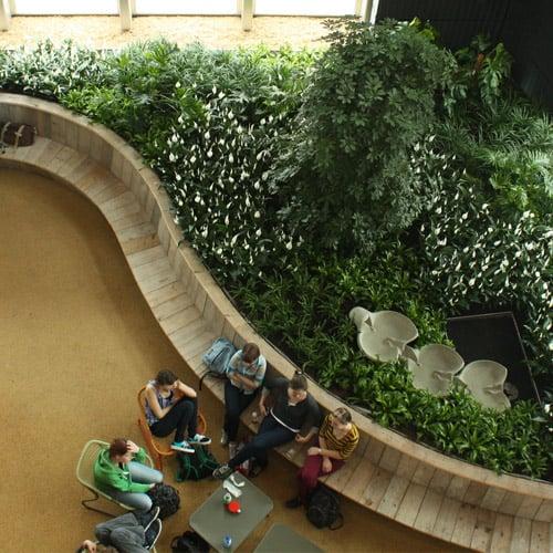 Groenbeplanting voor het onderwijs- Artiplant
