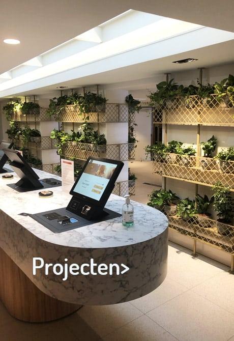 Planten voor de hotel lobby - Artiplant