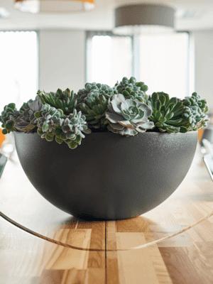 Top 10 kantoor bloempotten - Artiplant